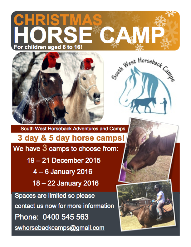horse camp flyer 2