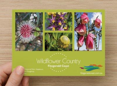 wildflower1.aspx